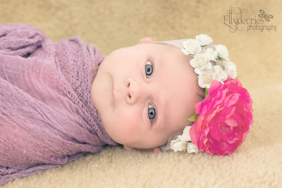 First baby shoot!