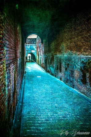 alley s