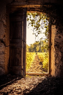 barn-door-s