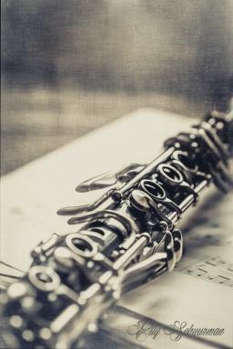 clarinet vintage s