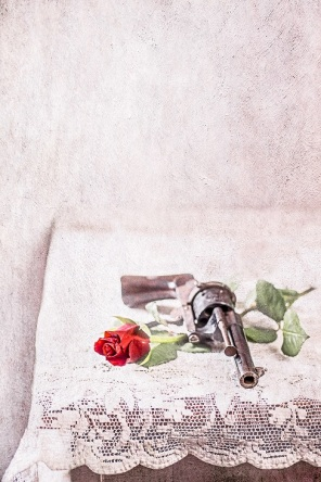 gun and rose s