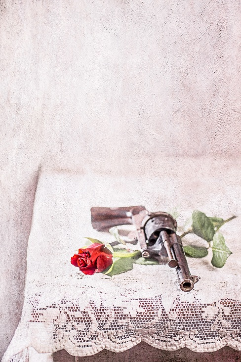 gun and rose s