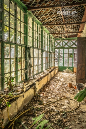 the greenhouse (1)