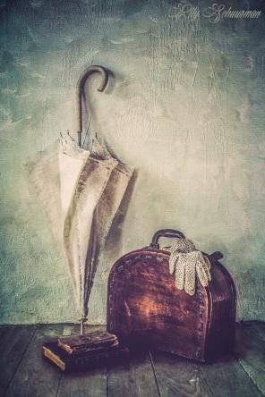 travel s