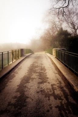 bridge in mist s