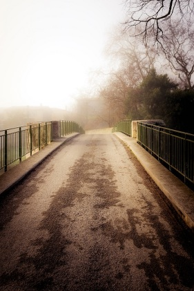 bridge in mist s