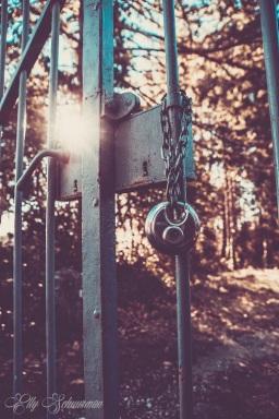 gate s (2)