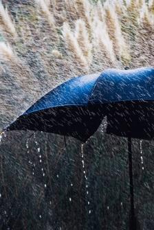 rain-s
