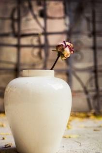 rose n vase s