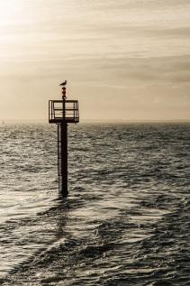 sea s