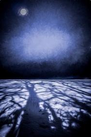shadows on snow a