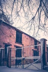 snowy gate s