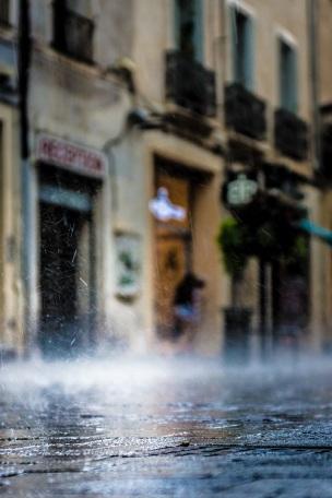 wet-s