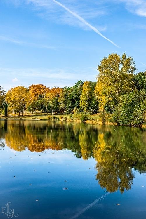 l'automne (2)s