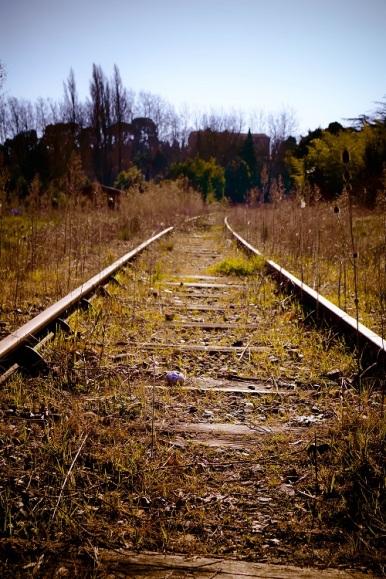 traintrack s (2)