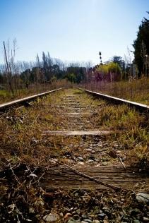 traintrack s (3)