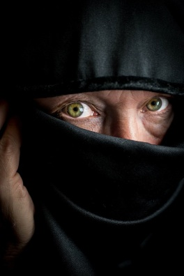 veiled (1).jpg s