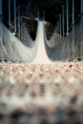 suspended bridge s (2)